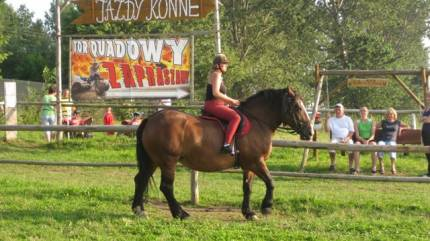 Stadnina koni Rumak
